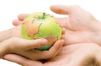 Innovación y tecnología en la alimentación sostenible